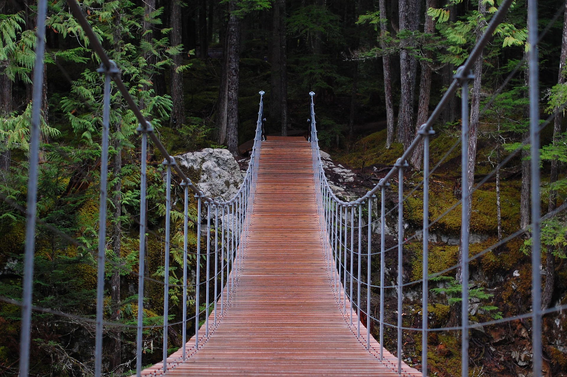 bridge-1980958_1920