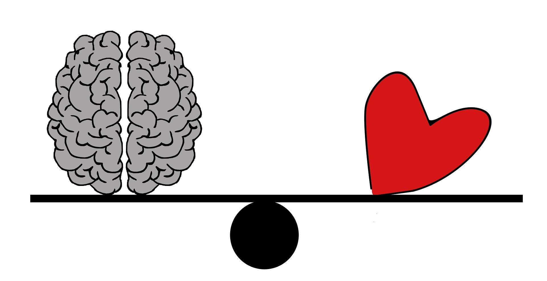 brain-2146156_1920